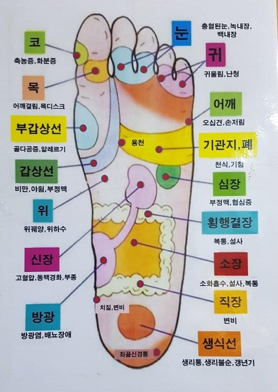 우리 발과 신체 관련.jpg