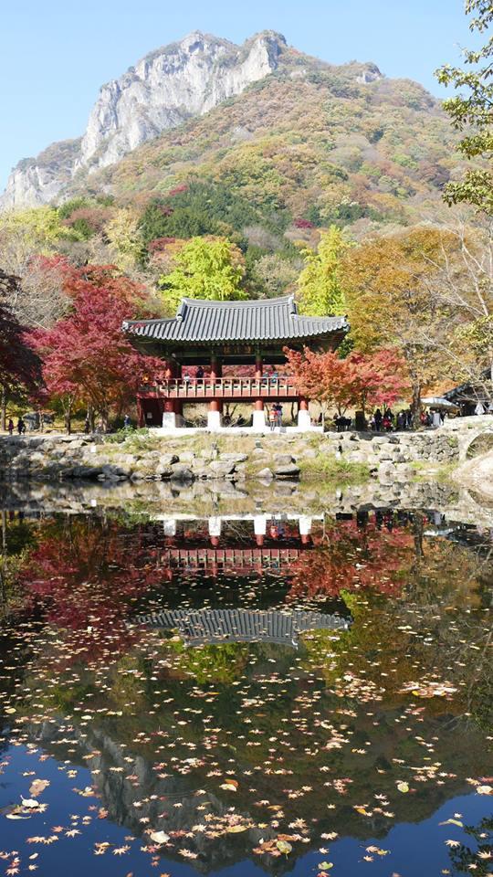 가을의 백양사 쌍계루2.jpg