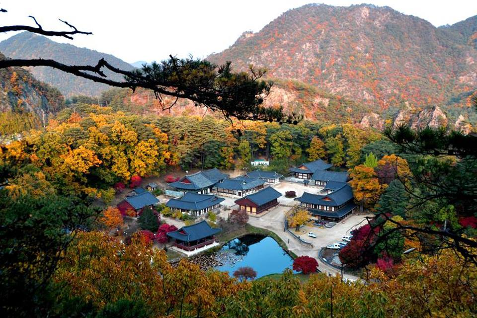 가을의 울진 불영사.jpg