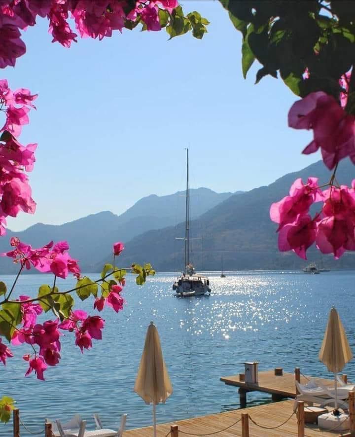 이오니아 바다, 그리스!.jpg