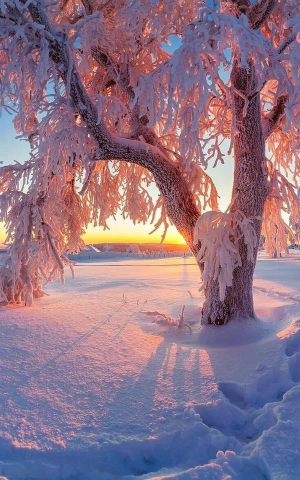 러시아 겨울...jpg