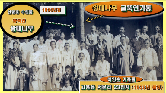 선참봉_51.png