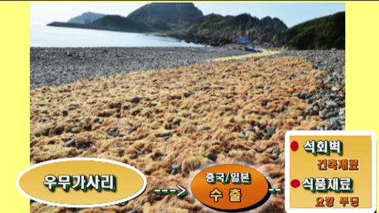 선참봉_37.png
