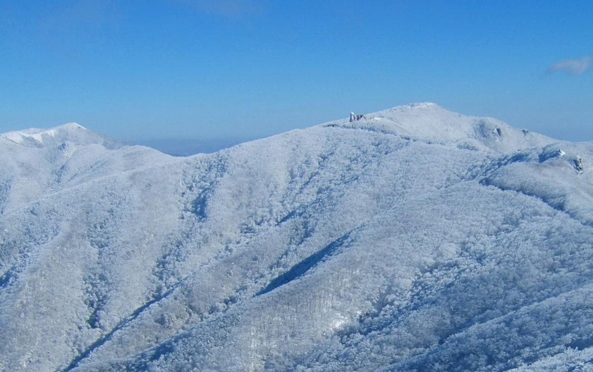 小白山 의 雪景9.jpg