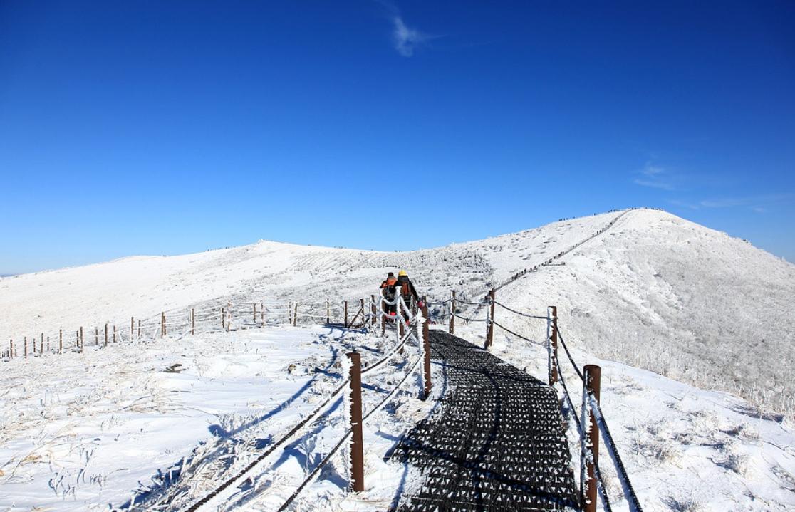 小白山 의 雪景23.jpg