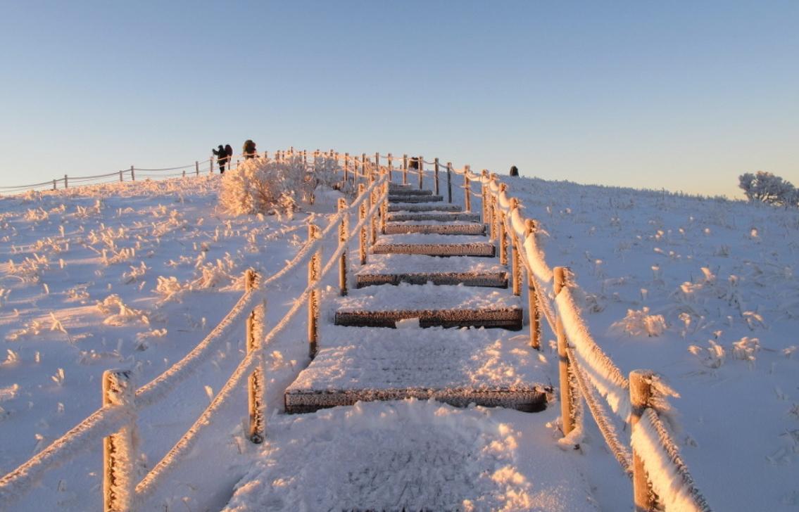 小白山 의 雪景6.jpg