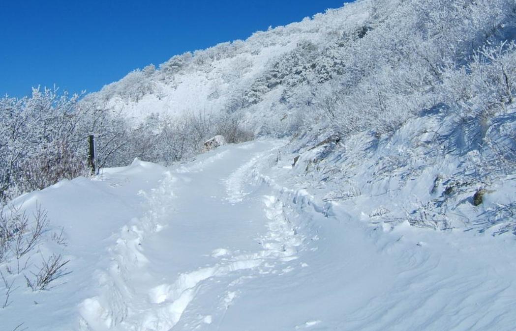 小白山 의 雪景29.jpg