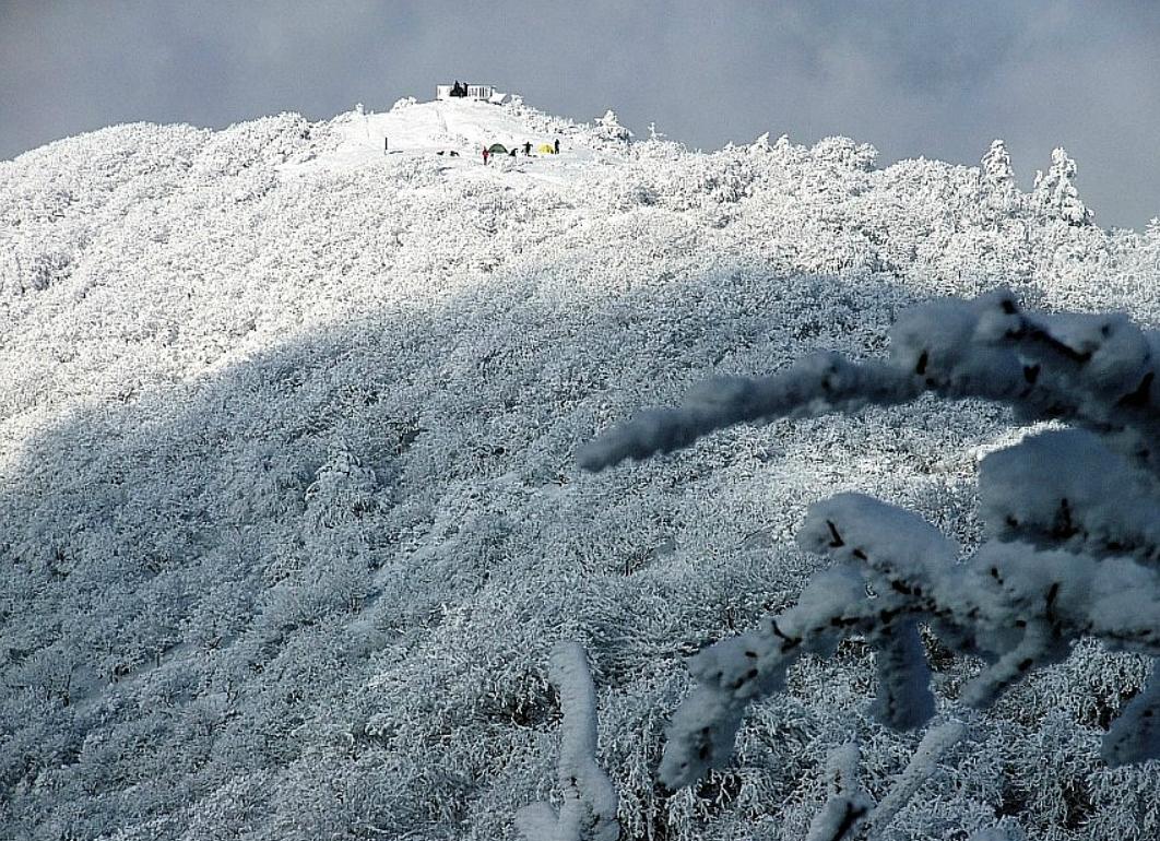 小白山 의 雪景17.jpg