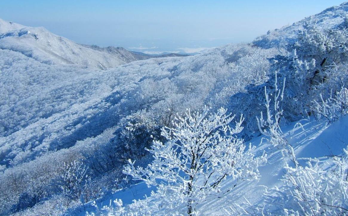 小白山 의 雪景22.jpg