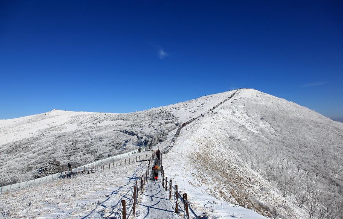 小白山 의 雪景15.jpg