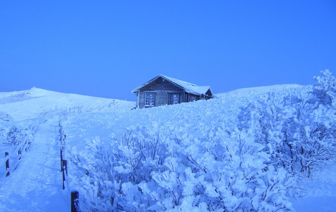 小白山 의 雪景14.jpg