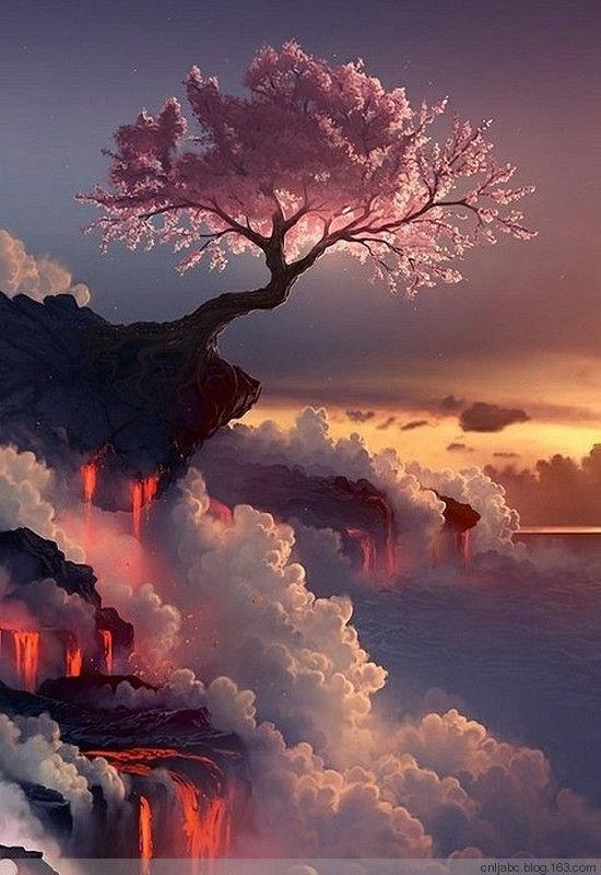 중국의 아름다운 풍경모음13.jpg