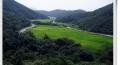 월포 마을 사진들 (10장)