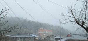 12월16일 눈이 펑펑왔...